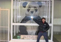 Will and the Panda