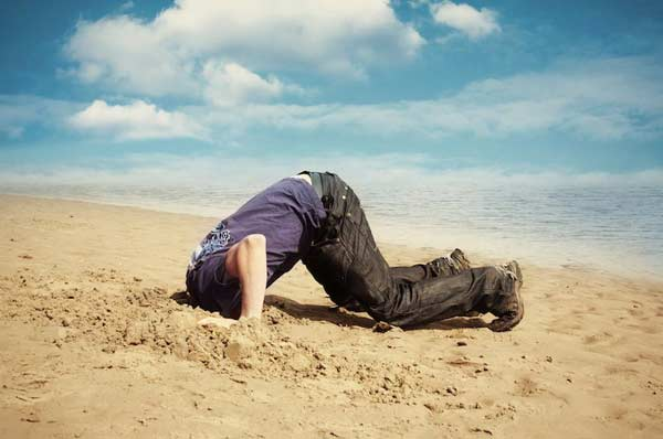 Head in the sand?